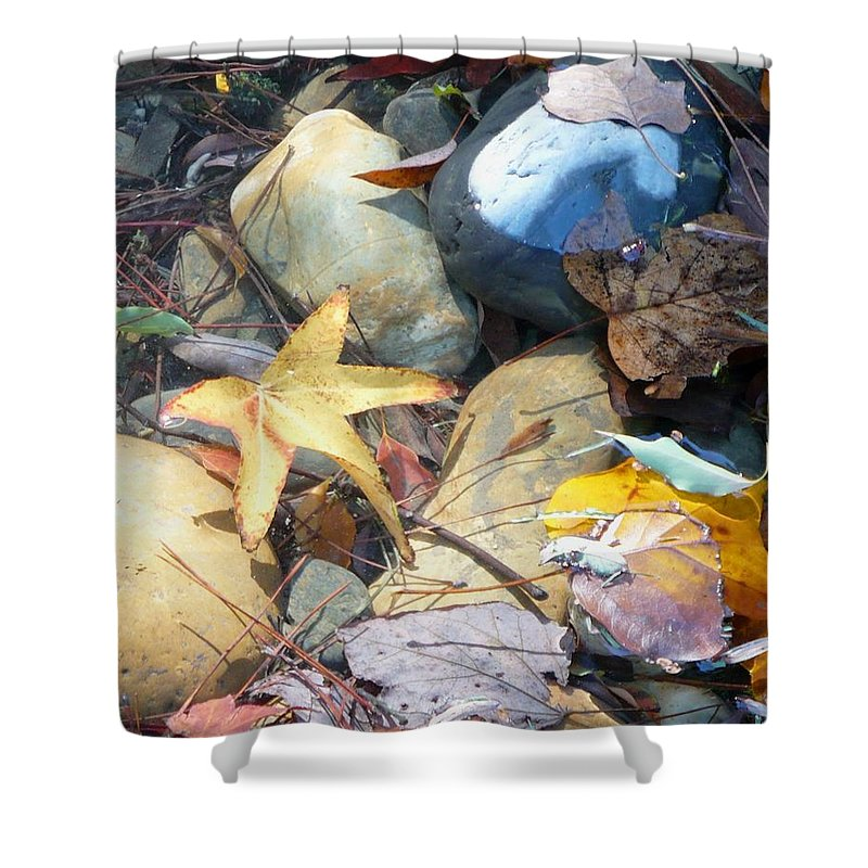 Leaves Shower Curtain featuring the photograph Colorful Leaves And Rocks In Creek by Carol Groenen