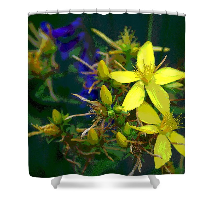 Flowers Shower Curtain featuring the photograph Colorful Wonder by Ben Upham III