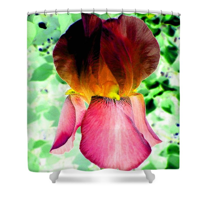 Photo Design Shower Curtain featuring the digital art Colormax 3 by Will Borden