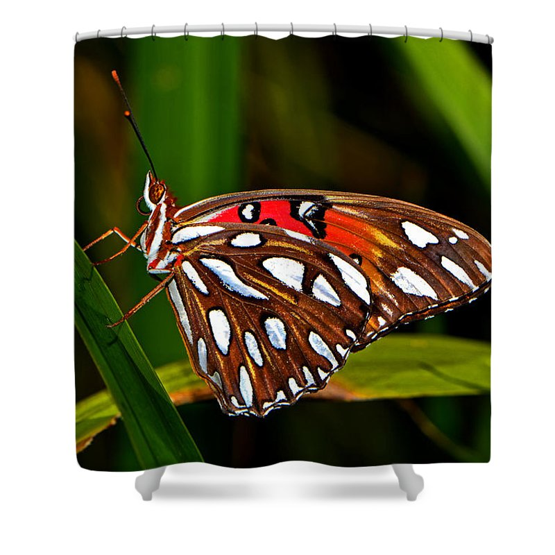 Macro Shower Curtain featuring the photograph Colors Of Nature - Natures Tapestry by George Bostian