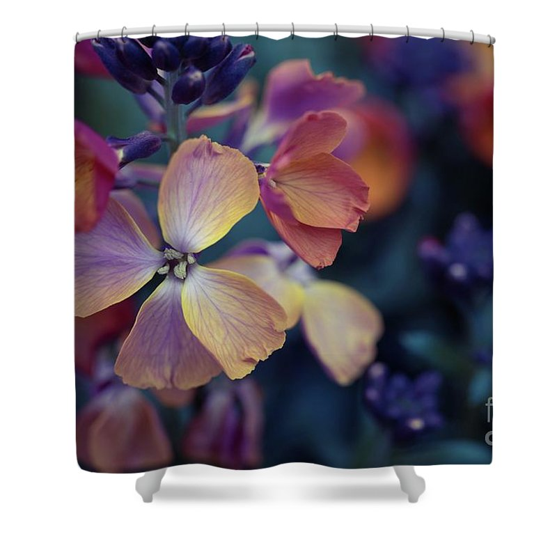 Flower Shower Curtain featuring the photograph Colors Of Spring by Eva Lechner