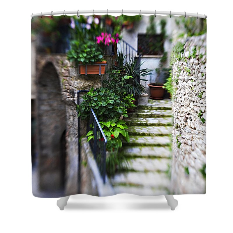 Home Shower Curtain featuring the photograph Coming Home by Marilyn Hunt