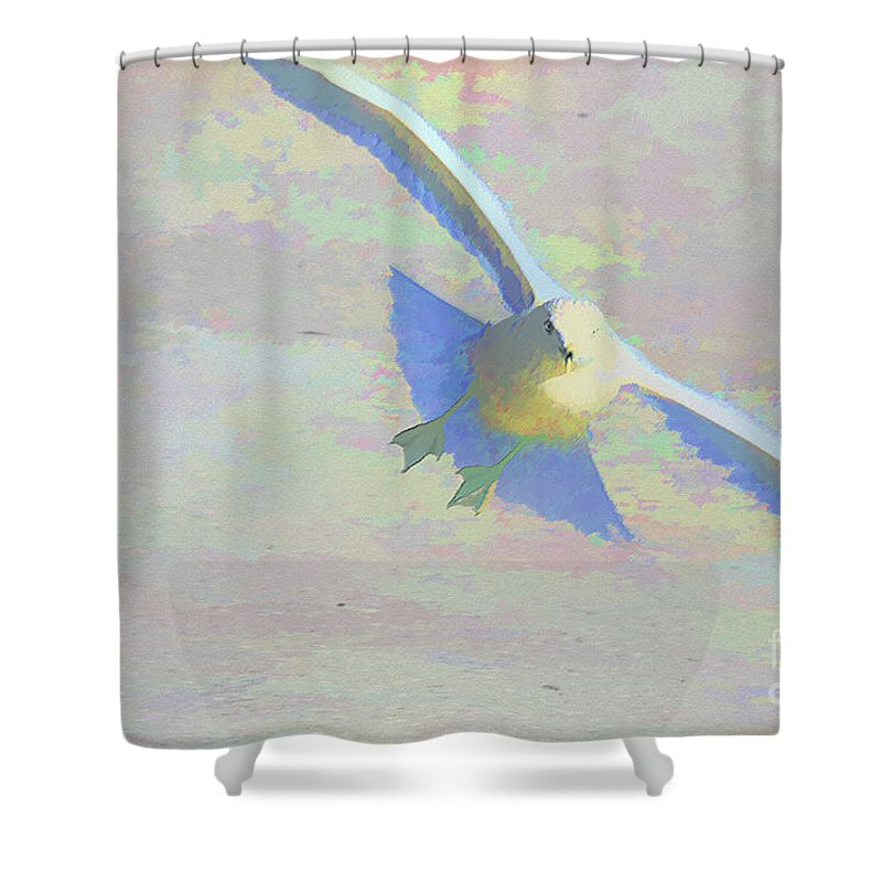 Bird Shower Curtain featuring the photograph Coming In by Deborah Benoit