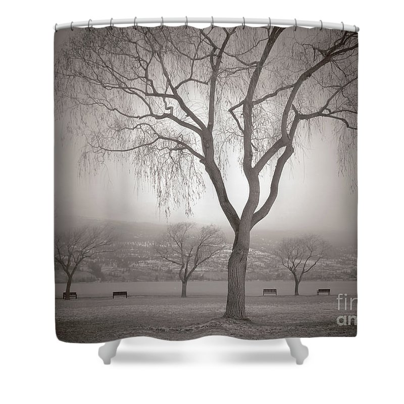 Summerland Shower Curtain featuring the photograph Composure by Tara Turner