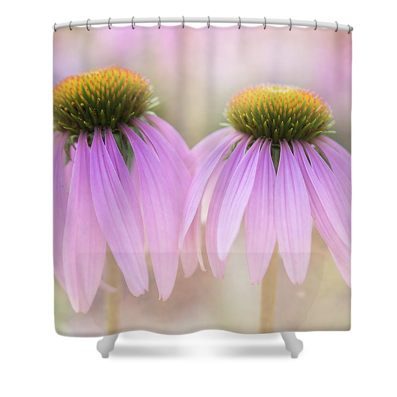 Flowers Shower Curtain featuring the photograph Cone Flowers by Jeff Klingler