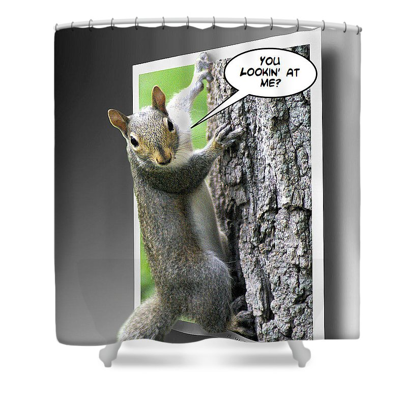 2d Shower Curtain featuring the photograph Confrontation by Brian Wallace
