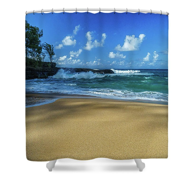 Beach Shower Curtain featuring the photograph Connection by David Kulp