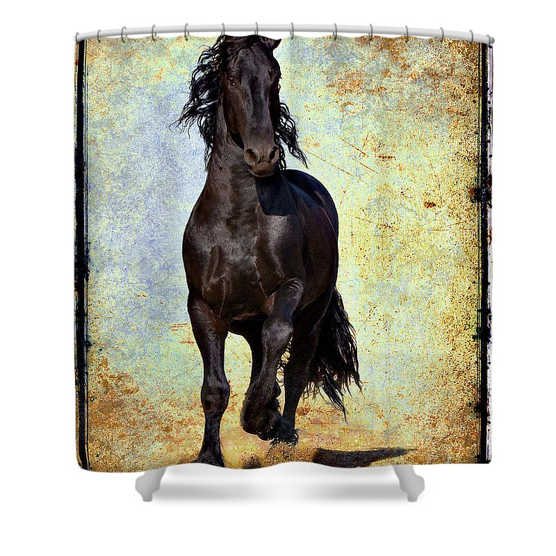 Shower Curtain featuring the photograph Conqueror by Jean Hildebrant
