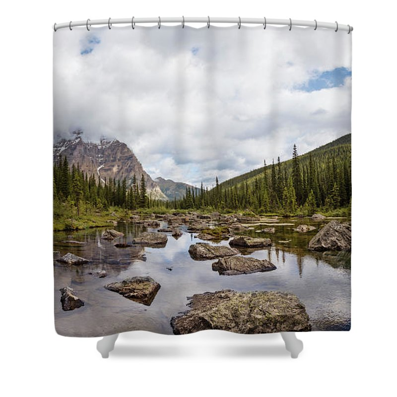 Consolation Shower Curtains