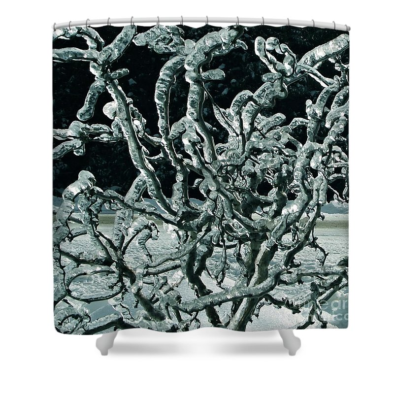 Ice Shower Curtain featuring the photograph Contorted by David and Lynn Keller