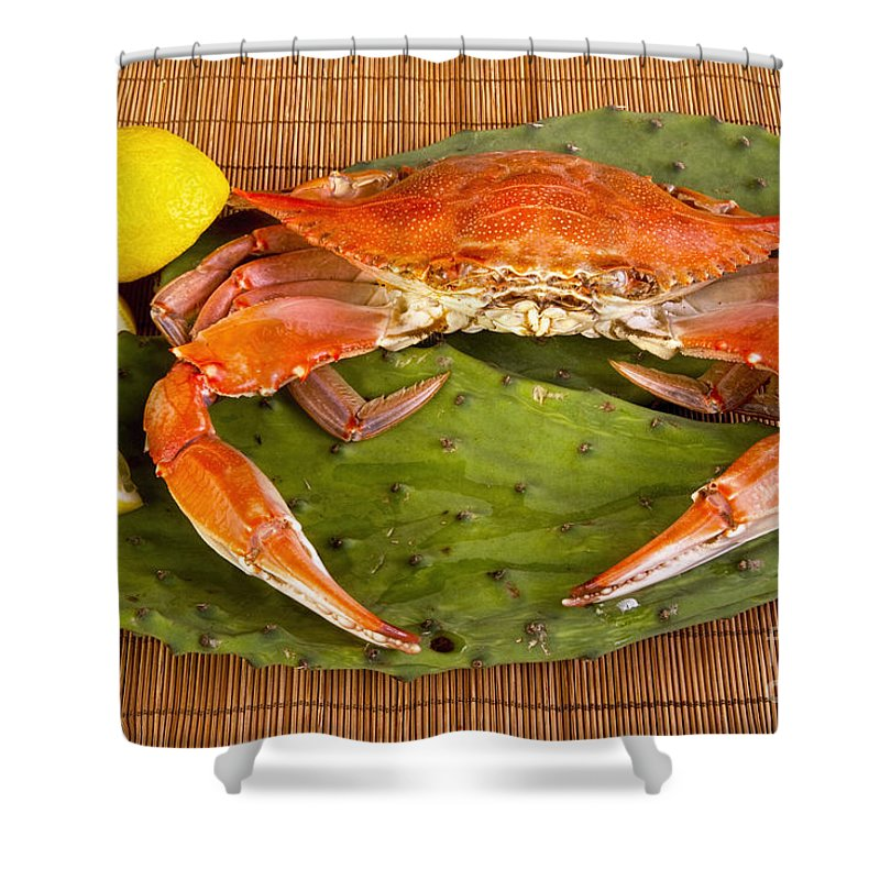 Cooked Crab Shower Curtain For Sale By W Scott McGill