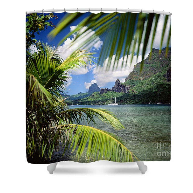 Across Shower Curtain featuring the photograph Cooks Bay With Sailboat by Ron Dahlquist - Printscapes