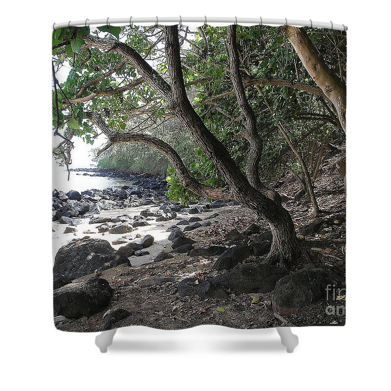 Ocean Shower Curtain featuring the photograph Cool Spot by Mary Deal