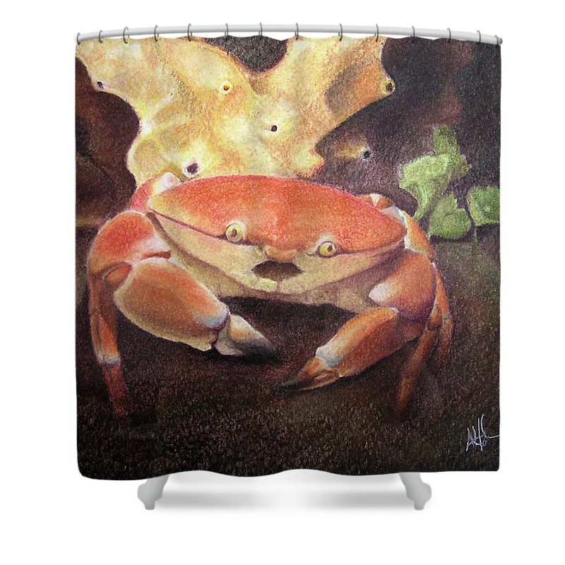 Animals Shower Curtain featuring the painting Coral Crab by Adam Johnson