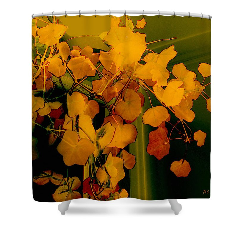 Autumn Shower Curtain featuring the digital art Corner In Green And Gold by RC DeWinter