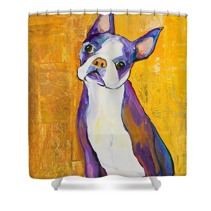 Boston Terrier Animals Acrylic Dog Portraits Pet Portraits Animal Portraits Pat Saunders-white Shower Curtain featuring the painting Cosmo by Pat Saunders-White