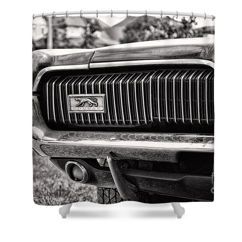 Mercury Shower Curtain featuring the photograph Cougar End by Traci Cottingham