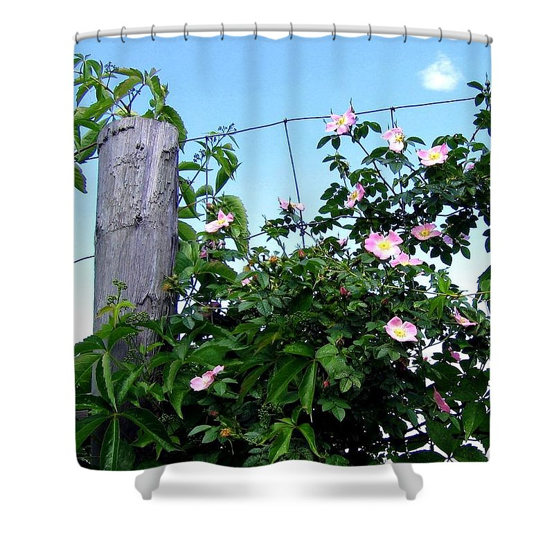 Country Shower Curtain featuring the photograph Country Calm by Will Borden