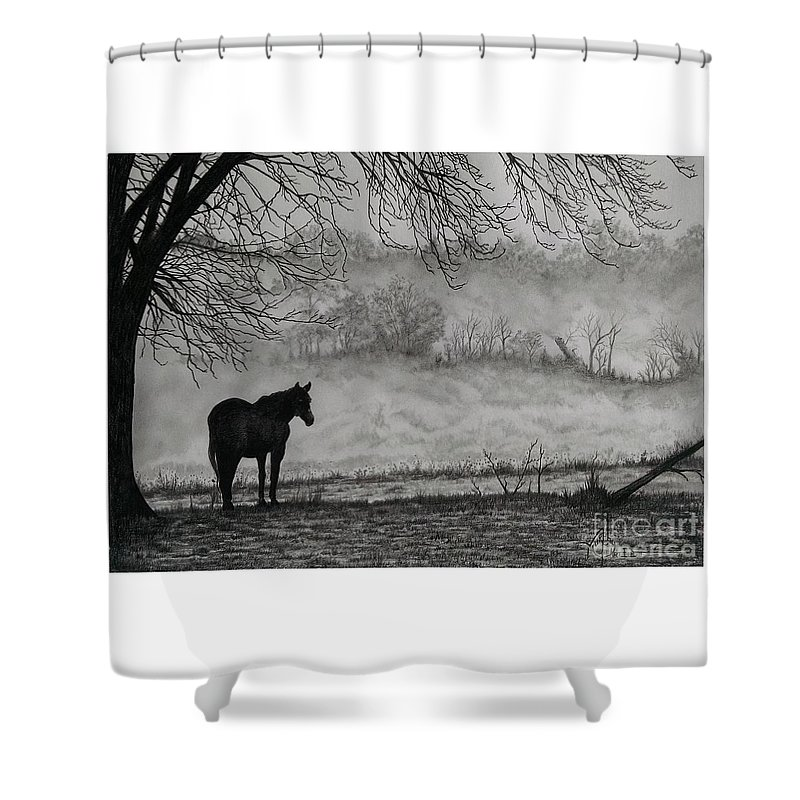 Pencil Shower Curtain featuring the drawing Country Horse by Murphy Elliott