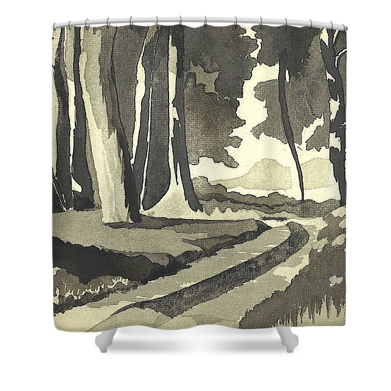 Rural Shower Curtain featuring the painting Country Lane In Evening Shadow by Kip DeVore
