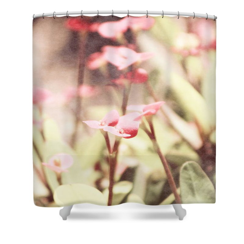 Prism Pink Shower Curtain featuring the photograph Country Memories in Prism Pink by Colleen Cornelius