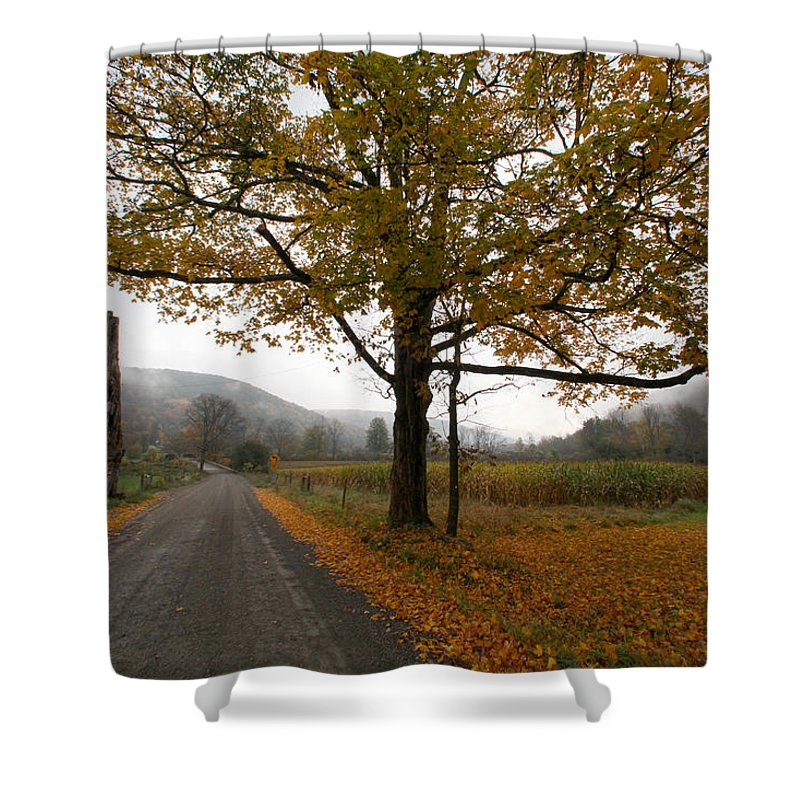 Country Fall Trees Field Road Drive Mountains Mountain Shower Curtain featuring the photograph Country Road by Robert Och