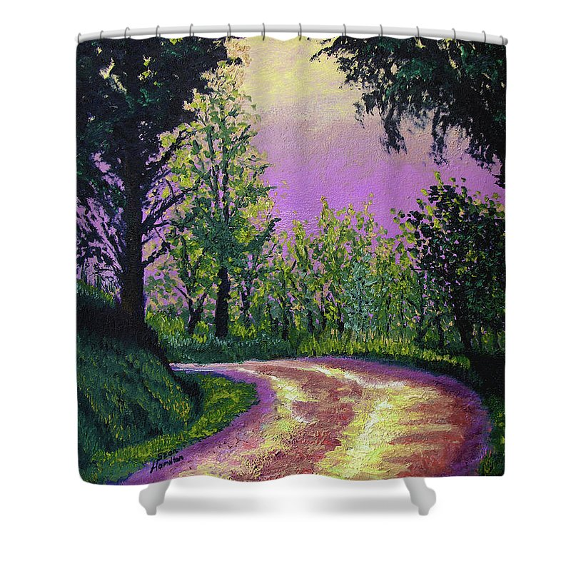 Landscape Shower Curtain featuring the painting Country Road by Stan Hamilton