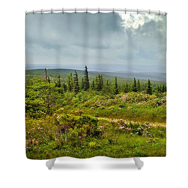 Sunshine Shower Curtain featuring the photograph Country Roads by Lj Lambert