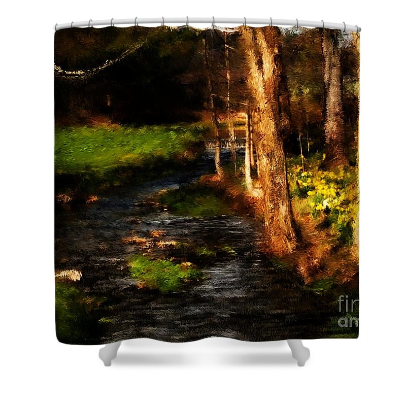 Digital Photo Shower Curtain featuring the photograph Country Stream by David Lane