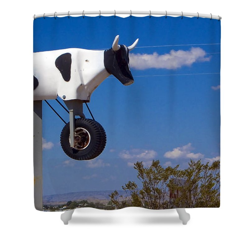 Cow Shower Curtain featuring the photograph Cow Power by Skip Hunt