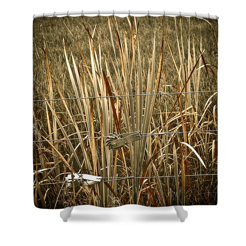 Americana Shower Curtain featuring the photograph Cowboy Fence by Marilyn Hunt