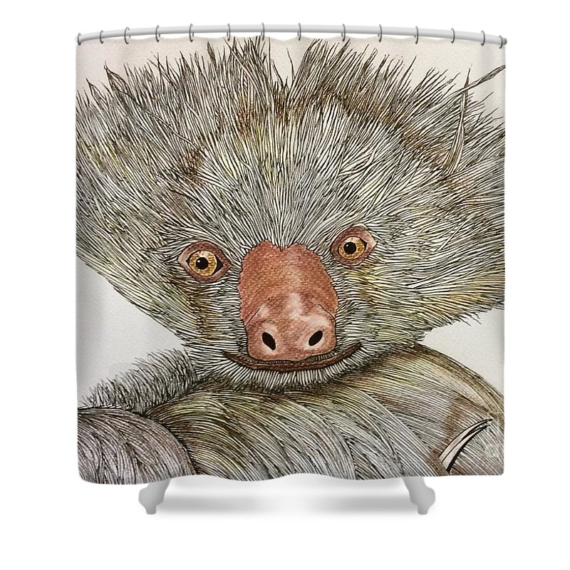 Nature Animal Baby Two Toed Sloth Impressionist Shower Curtain featuring the pastel Crazy Two Toed Sloth by Graham Wallwork