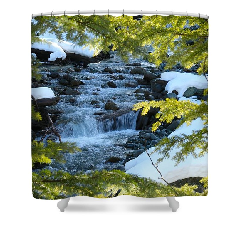 Nature Shower Curtain featuring the photograph Creek by Lisa Spero