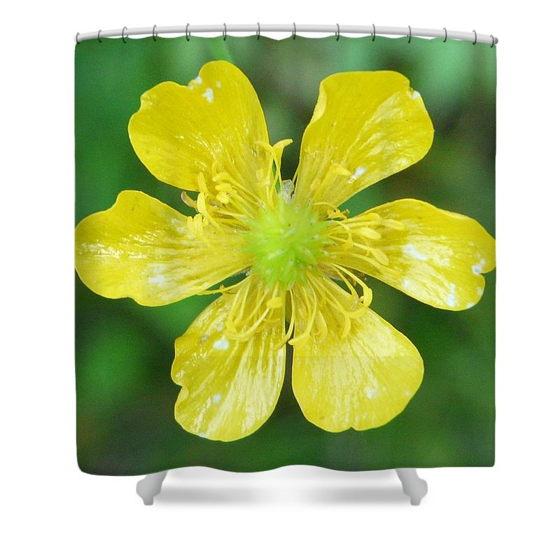Flower Shower Curtain featuring the photograph Creeping Buttercup by Valerie Ornstein