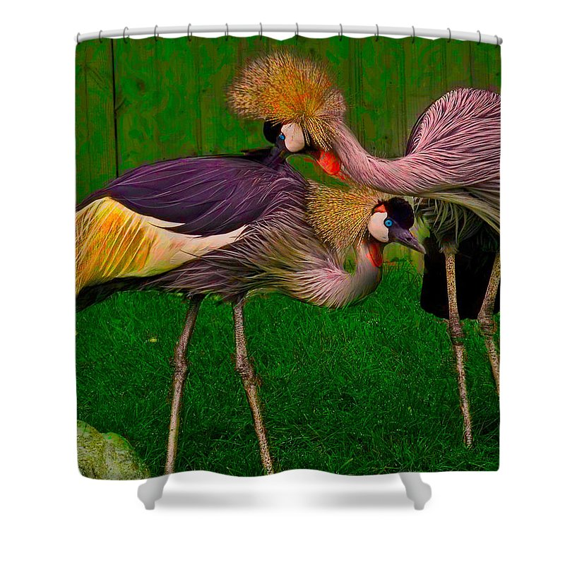 Crest Shower Curtain featuring the photograph Crested Cranes by Chris Lord