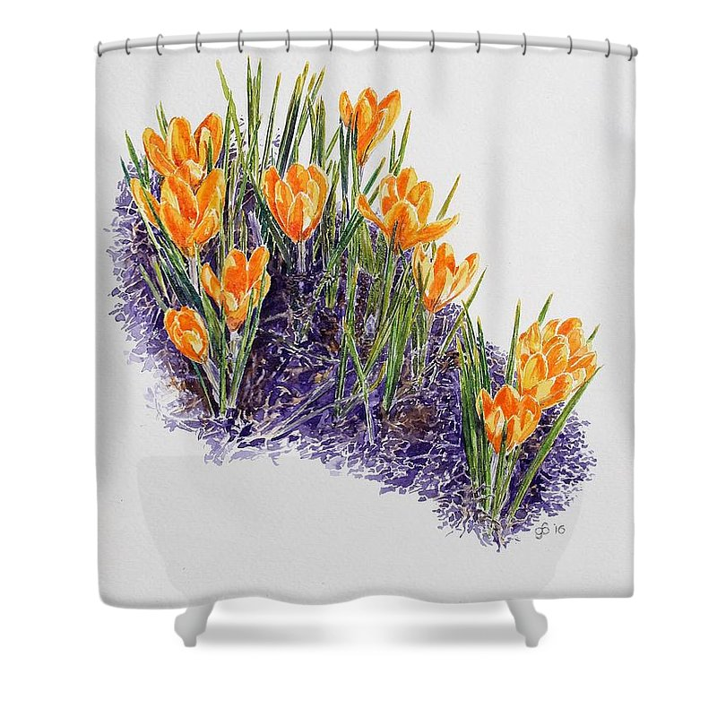 Painting Shower Curtain featuring the painting Crocuses by Glenn Boyles