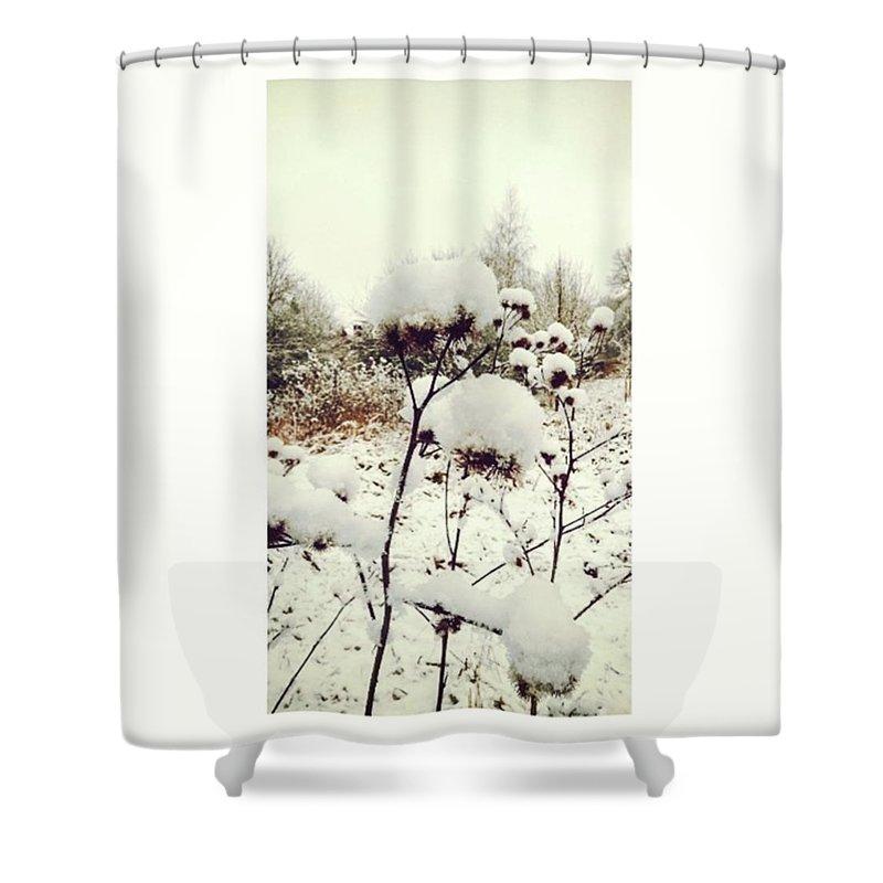 Florals Shower Curtains