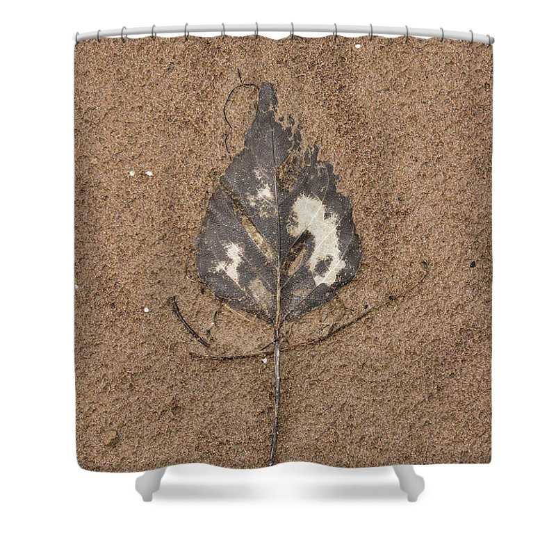 Montana Shower Curtain featuring the photograph Crushed by Alan Anderson