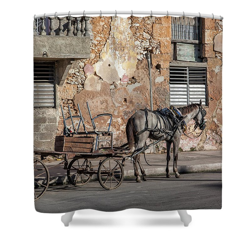 Cuban Horse Power; Cuban; Horse; Power; Horse And Carriage; Carriage; Hp; Cuba; Photography & Digital Art; Photography; Photo; Photo Art; Art; Digital Art; 2bhappy4ever; 2bhappy4ever.com; 2bhappy4evercom; Tobehappyforever; Shower Curtain featuring the photograph Cuban Horse Power FC by Erron