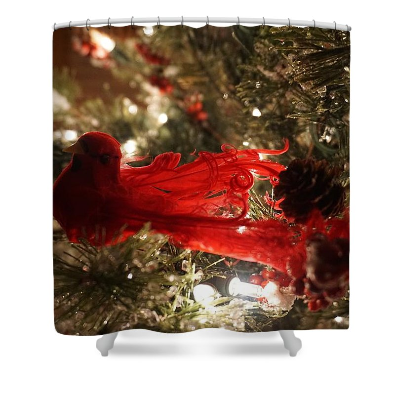Decoration Shower Curtain featuring the photograph Curly Cardinal by Susan Brown
