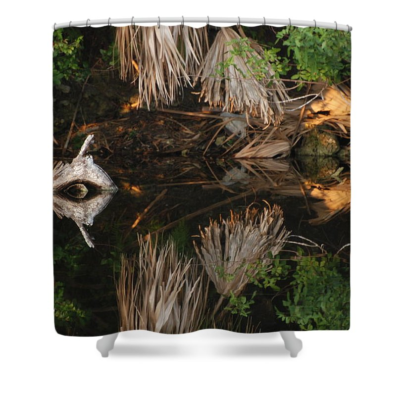 Sunset Shower Curtain featuring the photograph Cyclops In Color by Rob Hans