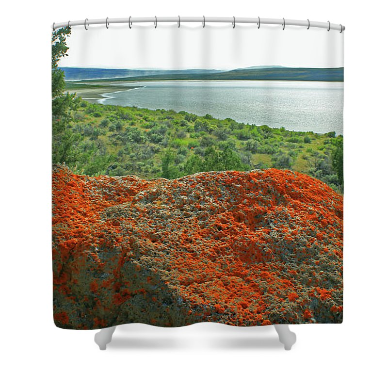 Lichen Shower Curtain featuring the photograph Da5869 Lichen Covered Rock by Ed Cooper Photography