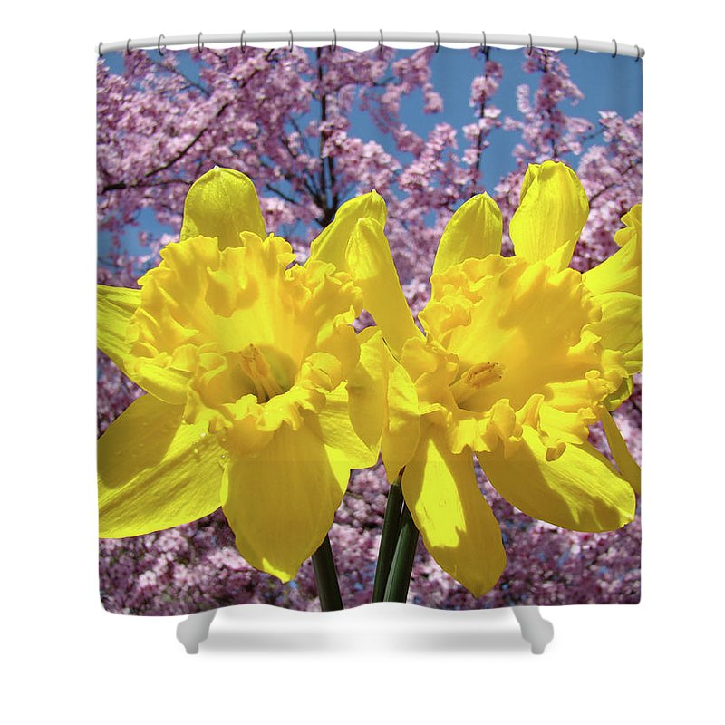Daffodils Shower Curtain featuring the photograph Daffodil Flowers Spring Pink Tree Blossoms Art Prints Baslee Troutman by Baslee Troutman