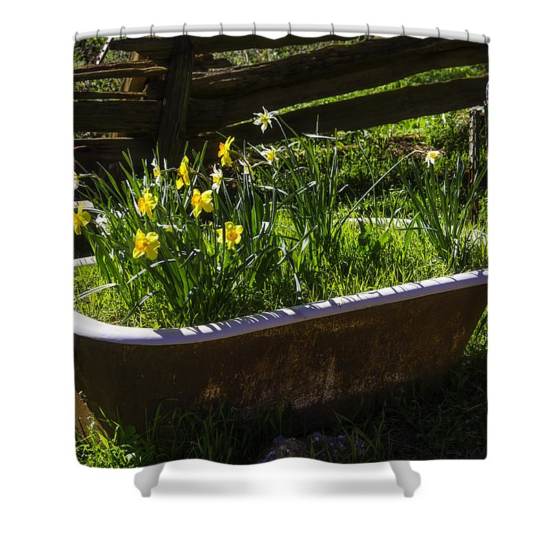 Floral Shower Curtain Daffodils with Grass Print for Bathroom