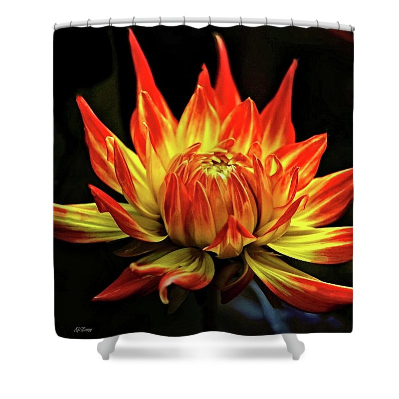 Dahlia Shower Curtain featuring the mixed media Dahlia 0078 by G Berry