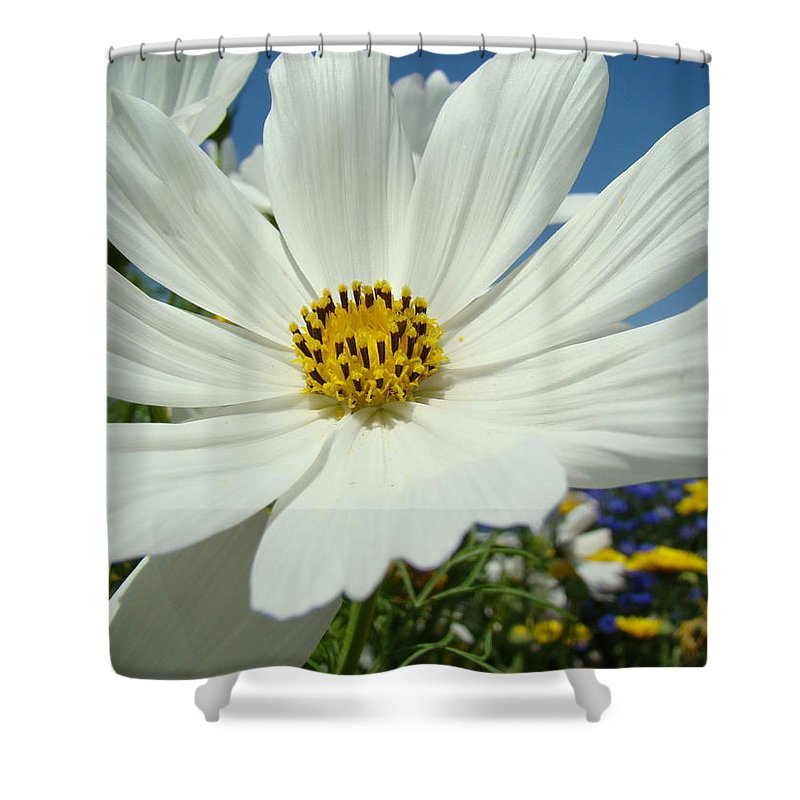 Daisy Shower Curtain featuring the photograph Daisy Flower Garden Artwork Daisies Botanical Art Prints by Baslee Troutman