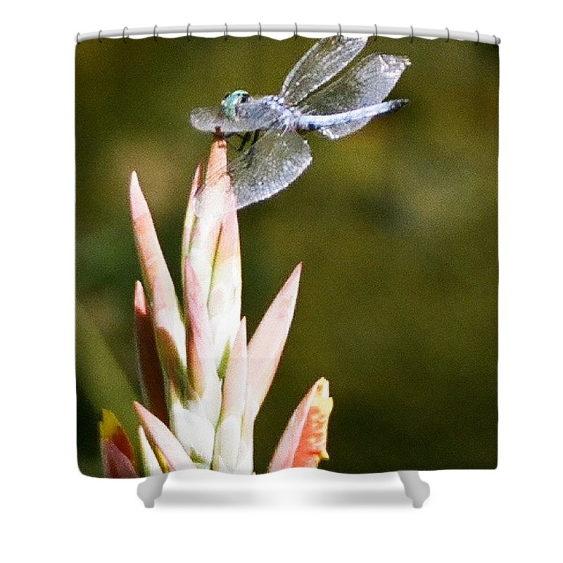 Dragonfly Shower Curtain featuring the photograph Damselfly by Dean Triolo