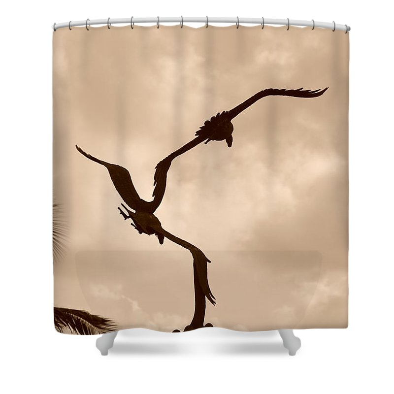 Sepia Shower Curtain featuring the photograph Dancing Birds by Rob Hans