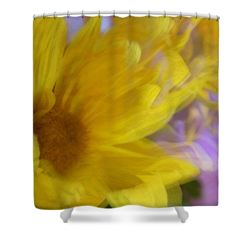 Flowers Shower Curtain featuring the photograph Dancing Daisy by Linda Sannuti