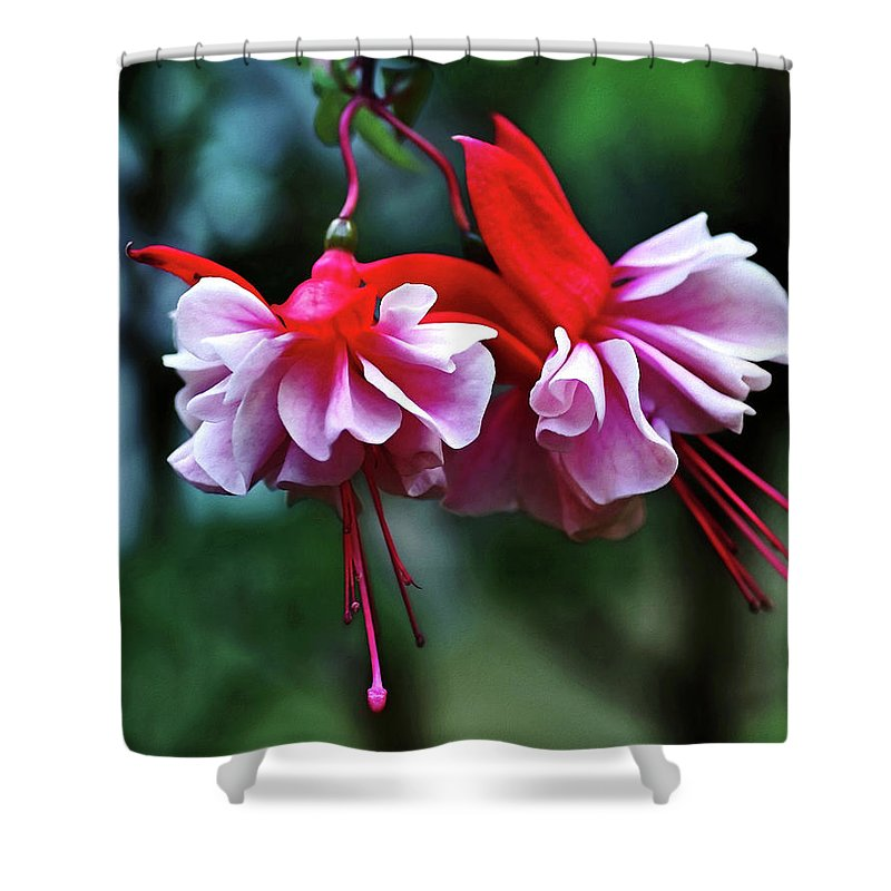Dancing Ladies Shower Curtain featuring the photograph Dancing Ladies by Kaye Menner